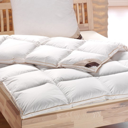 Daunen Duvet Edition Gold