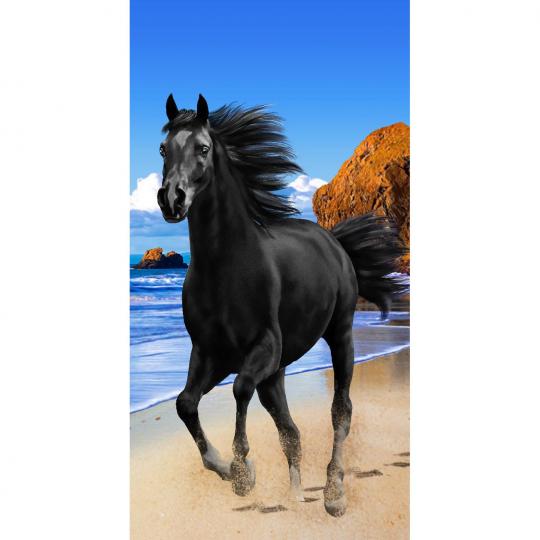 Strandtuch Bleack Beauty 76x152 cm