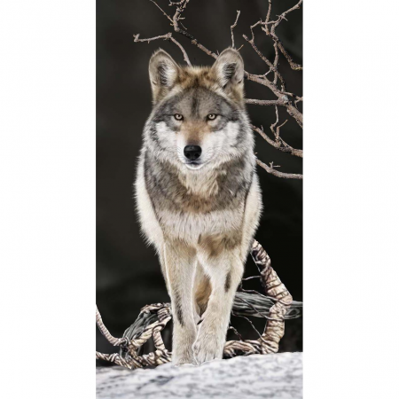 Strandtuch Wolf 76x152 cm