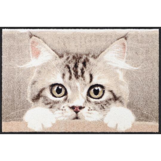 Fussmatte Nosy Cat Mocca 50x75 cm