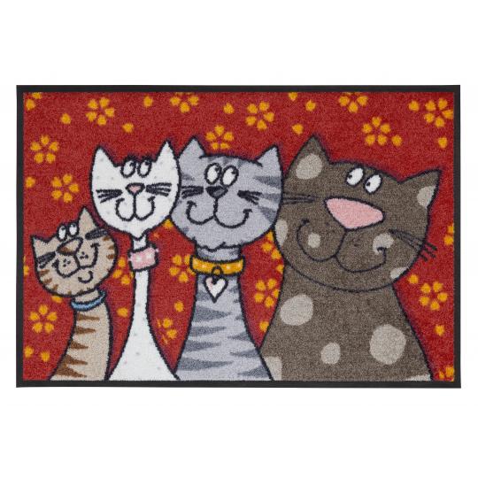 Fussmatte Katzenfamilie 50x75 cm